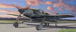 DML MILITARY KITS Fw-190A5/U-14 1:48, LIST PRICE $44