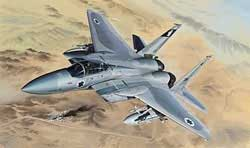 Lion Roar F-15B/D USAF & ISRAELI 2n1 :48, LIST PRICE $121
