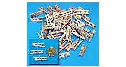 Model Expo MINI CLOTHESPINS SET , LIST PRICE $7.99