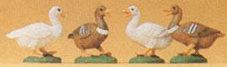 Preiser Ducks                  4/, LIST PRICE $20.99