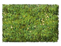 Scenic Express Flock & Turf Ground Cover ECO Bag Alpine Meadown Blend 48oz, LIST PRICE $8.98