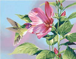 Paint Works HIBISCUS HUMMINGBIRD Med , LIST PRICE $12