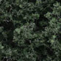 Woodland Scenics DARK GREEN FINE LEAF FOLIAGE, LIST PRICE $18.99