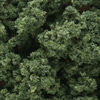 Woodland Scenics MEDIUM GREEN BUSHES (BAG), LIST PRICE $5.99