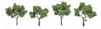 "Woodland Scenics 2 3"" RM REAL LT GR 4/PK, LIST PRICE $10.99"