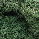 Woodland Scenics LIGHT GREEN LICHEN, LIST PRICE $12.99
