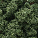 Woodland Scenics MEDIUM GREEN UNDERBRUSH, LIST PRICE $14.99