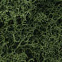 Woodland Scenics MEDIUM GREEN LICHEN, LIST PRICE $11.99