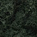 Woodland Scenics DARK GREEN LICHEN, LIST PRICE $11.99