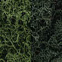Woodland Scenics DARK GREEN MIX LICHEN, LIST PRICE $18.99