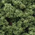 Woodland Scenics LIGHT GREEN CLUMP FOLIAGE(BAG), LIST PRICE $18.99