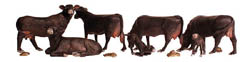 Woodland N BLACK ANGUS COWS, LIST PRICE $15.99