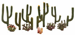 "Woodland 1/2 2 1/2"" CACTUS PLANTS 13/PK, LIST PRICE $14.99"