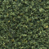 Woodland Scenics GREEN BLEND FINE TURF (BAG), LIST PRICE $7.99