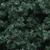 Woodland Scenics DARK GREEN FOLIAGE CLUSTERS, LIST PRICE $10.99