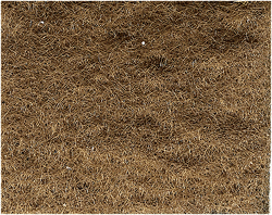 Woodland Scenics BURNT GRASS FLOCK, LIST PRICE $12.99