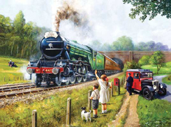 Train Enthusiast Watching the Trains Puzzle 1000 Pieces, LIST PRICE $16.5