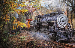 Train Enthusiast Train's Coming Puzzle 1000 Pieces, LIST PRICE $16.5
