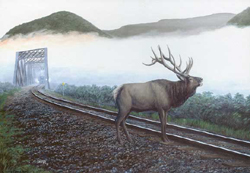 Train Enthusiast  Elk Tracks Puzzle 550pc, LIST PRICE $12.5
